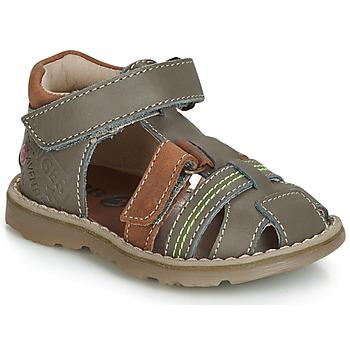 Shoes Boy Sandals GBB SEVILLOU Grey / Brown